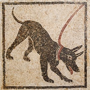 Beware of the dog mosaic from Pompeii