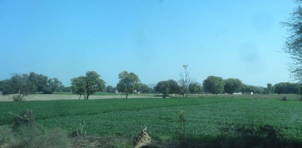 A view of the Indian Countryside from the train