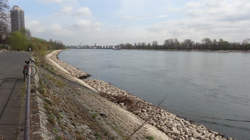 Walk along the Rhine