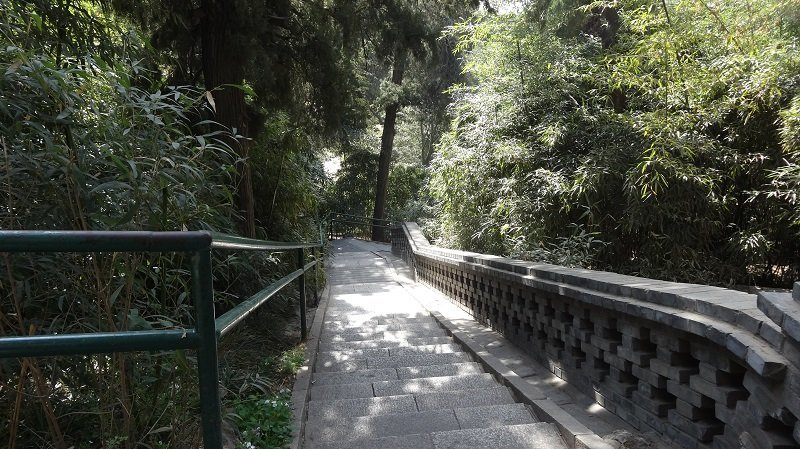 Walking up the hill in Jingshan Park