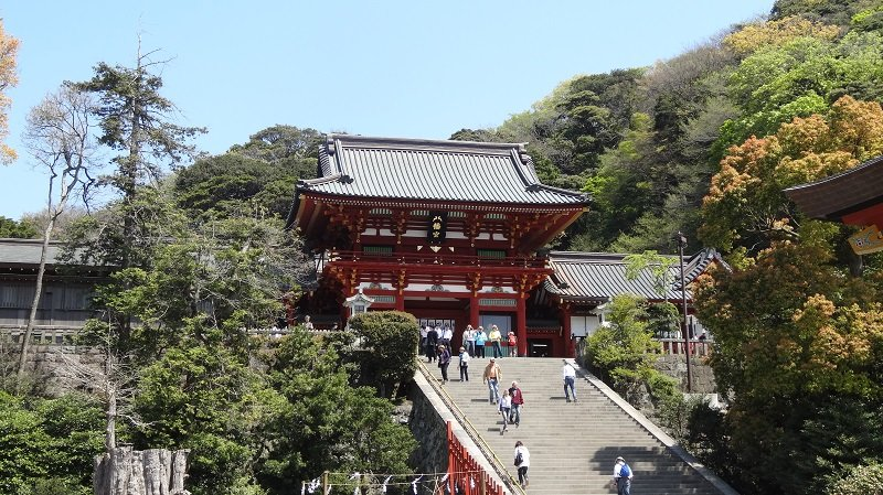 Japan Itinerary 7 Days Tsurugaoka Hachimangu Shrine