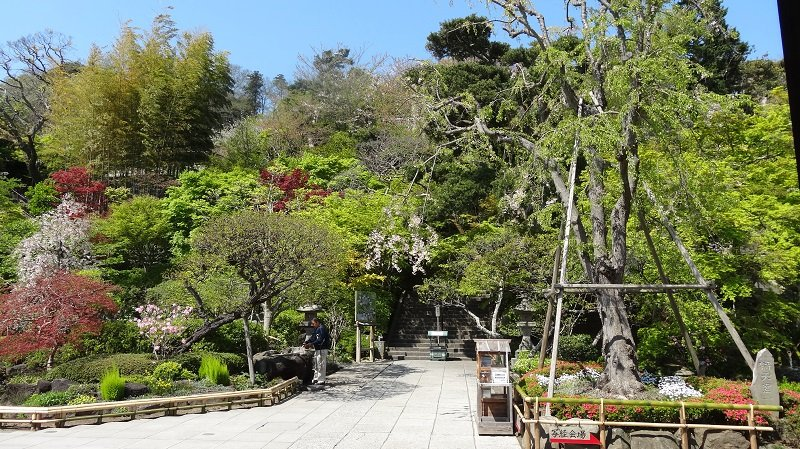Gardens at Hase Temple Kamakura