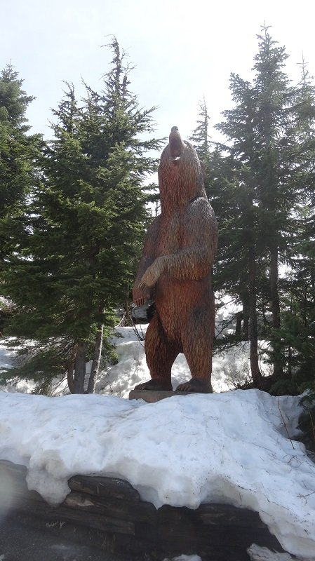 Bear Statue outside the Visitor's Lodge on Grouse Mountain