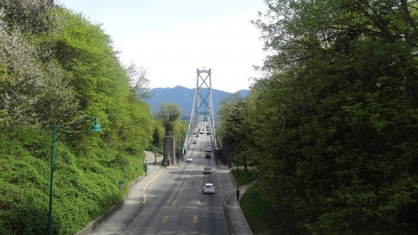 The Lionsgate Bridge from Stanley Park