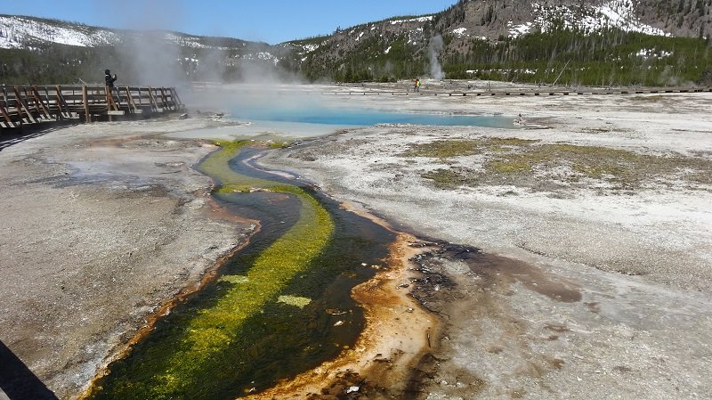 Get a close-up view of the geothermal activity from the boardwalk