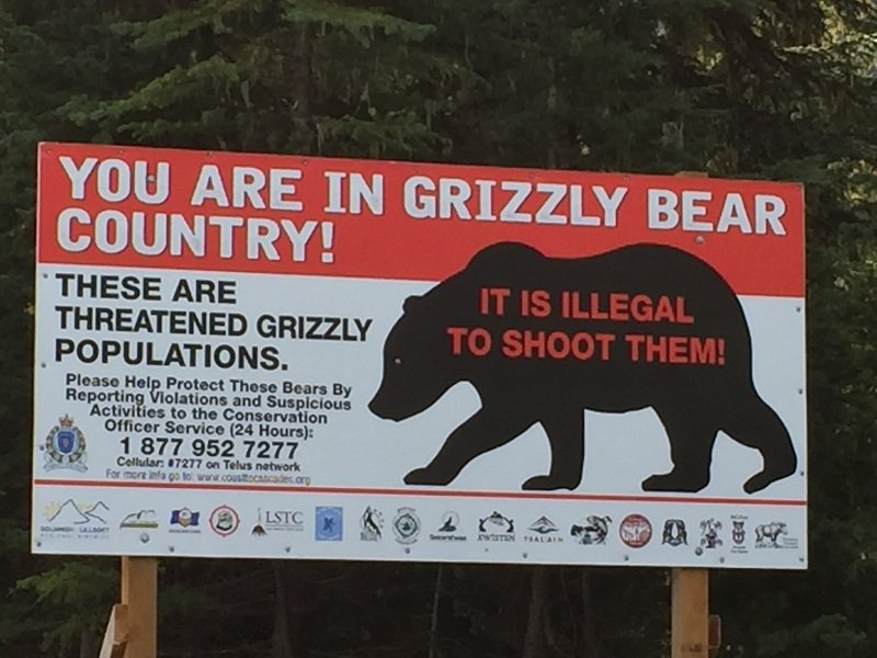 We are in Grizzly Bear Country
