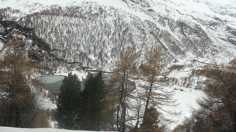 View from the Bernina Express Train
