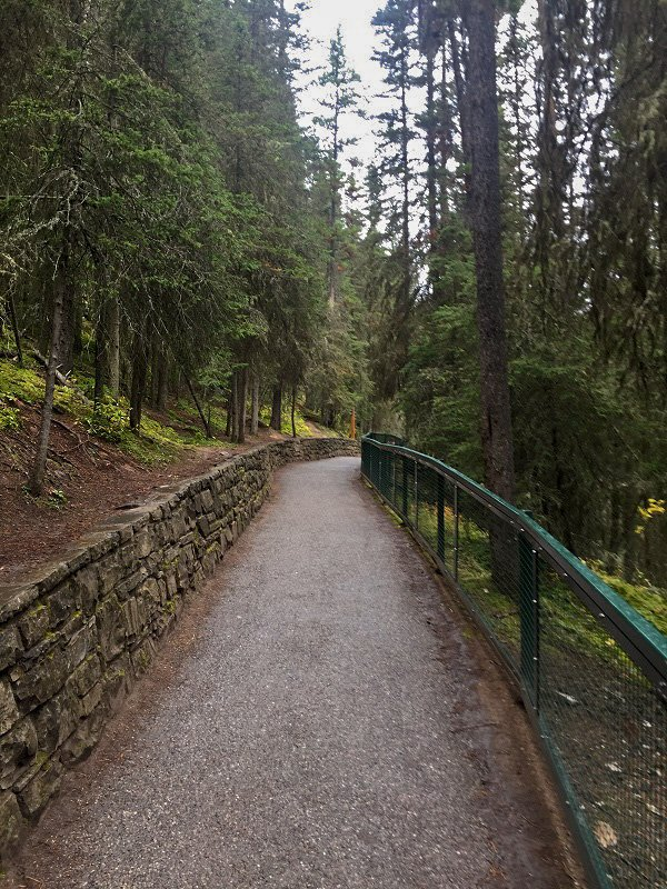 Wide paved paths on the trail to the Lower Falls